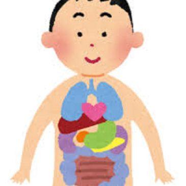 臓器摘出手術後の重さの変化=足の長さの変化=体調の変化