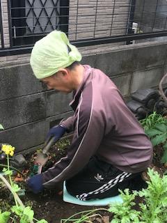 庭仕事 草引き 草むしり 腰痛